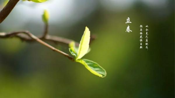 描写立春的诗词